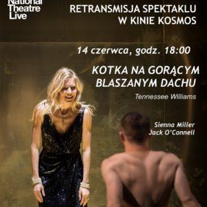 Kino Kotka